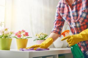 Start Your Spring Cleaning with an Energy Audit from AAA Northgate!