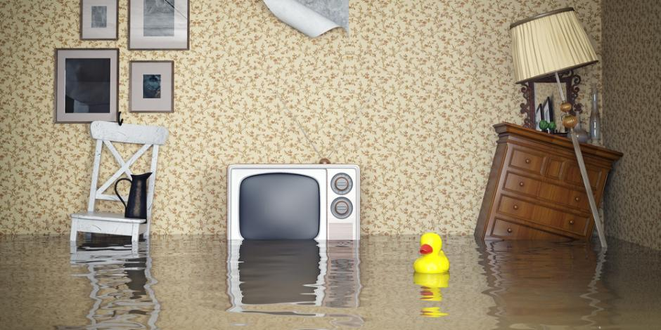 AAA Northgate One Hour Air, Flooded Basement and home, IL